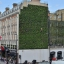 'Living Walls' on London hotels